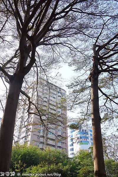 04_台南巴克禮公園