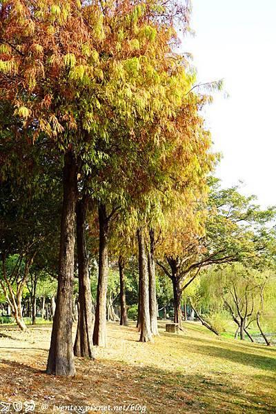 09_台南巴克禮公園