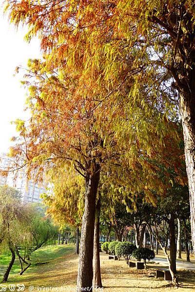 10_台南巴克禮公園