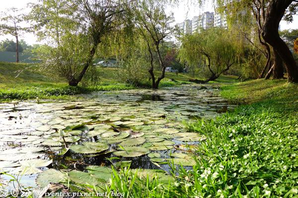 14_台南巴克禮公園