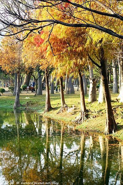 19_台南巴克禮公園