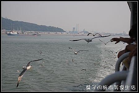 仁川海鷗船