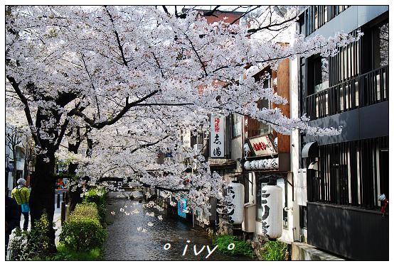木屋町高瀨川