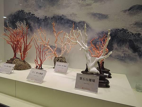 綺麗珊瑚博物館1.jpg