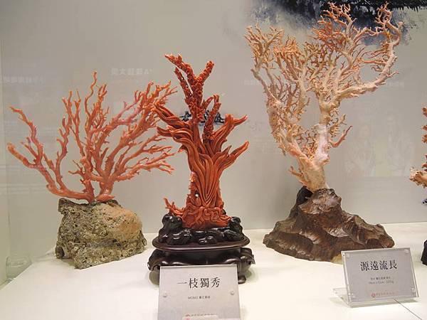 綺麗珊瑚博物館2.jpg