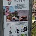 211豐原賞櫻10.jpg