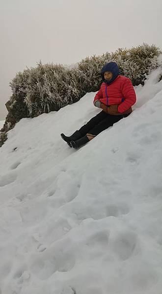 212合歡山追雪.jpg
