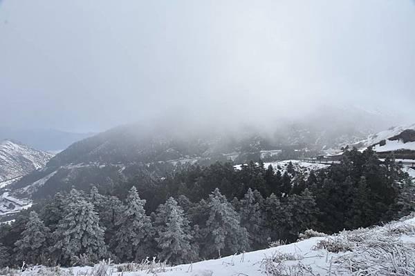 212合歡山追雪23.jpg