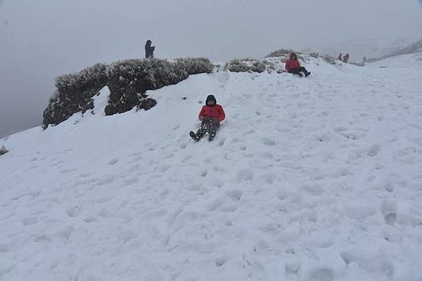 212合歡山追雪28.jpg
