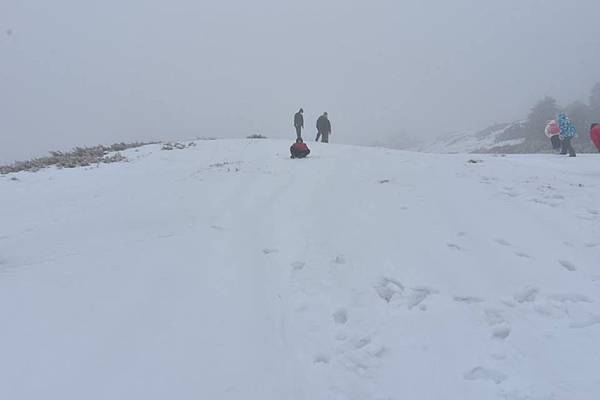 212合歡山追雪33.jpg