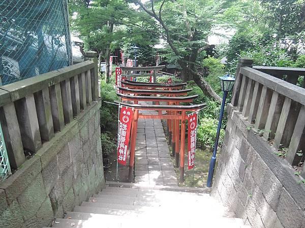 上野-花園.jpg