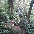 龍潭石門山13.jpg