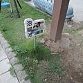 羅浮溫泉20.jpg