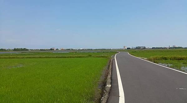三奇伯朗大道3.jpg