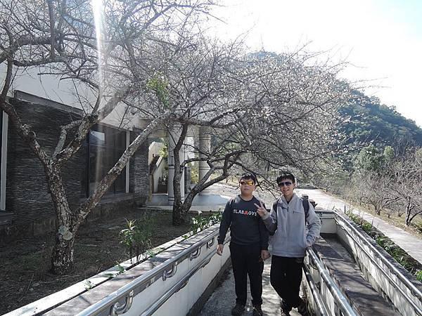 梅山遊客中心17.jpg