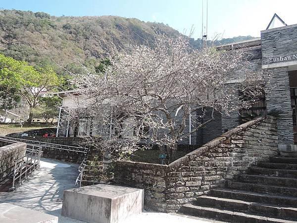 梅山遊客中心23.jpg