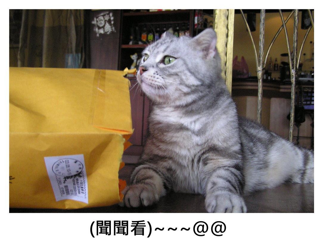 小夫紙袋2.JPG