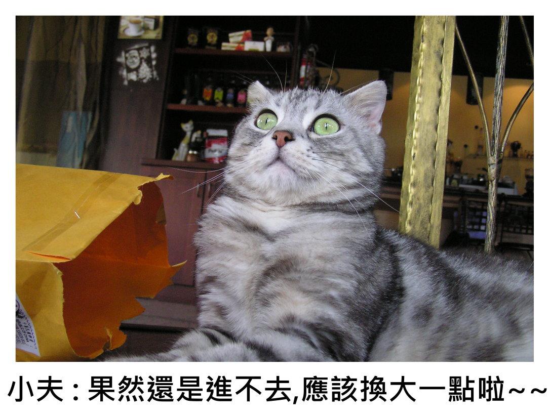 小夫紙袋5.JPG