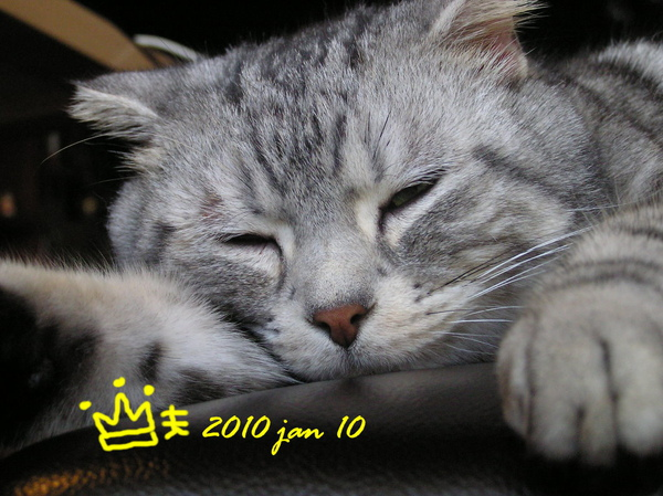 fufu (44).JPG