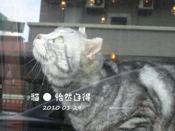 怡然自得 (52).JPG