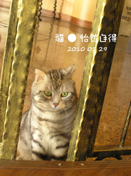 怡然自得 (68).jpg