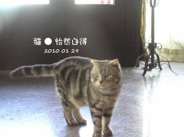 怡然自得 (77).JPG