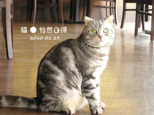 怡然自得 (82).JPG