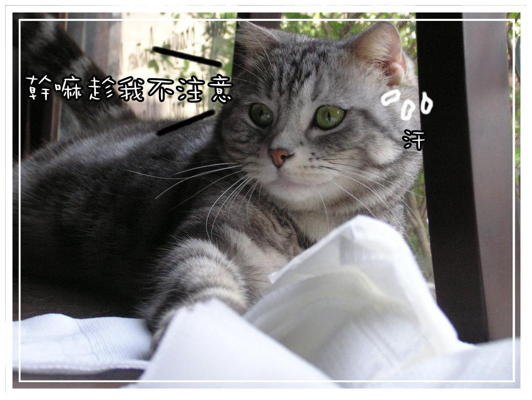 小夫餐巾紙9.JPG