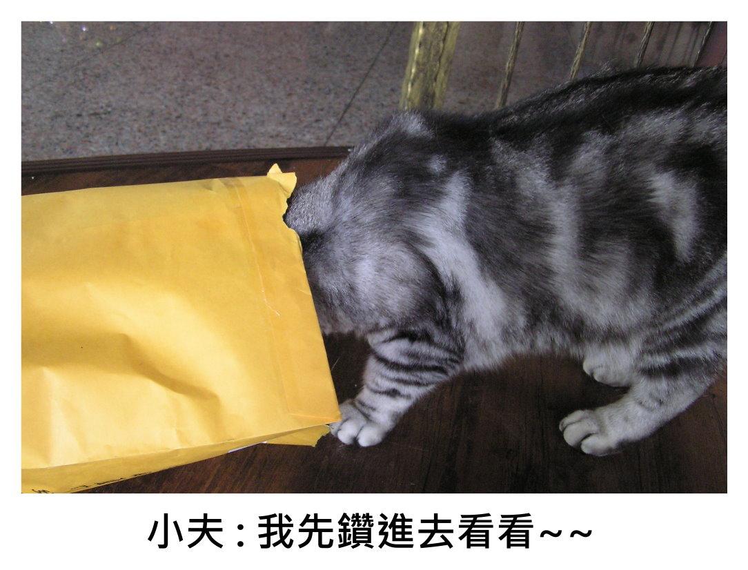 小夫紙袋4.JPG