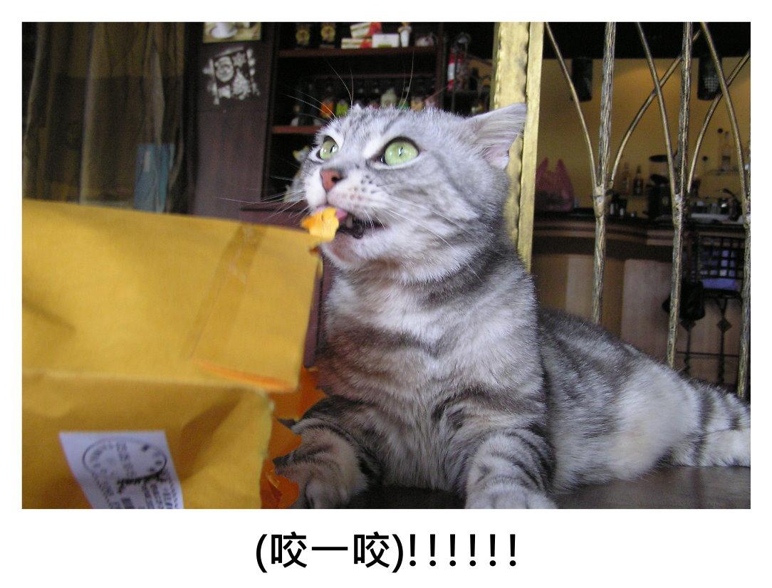 小夫紙袋3.JPG