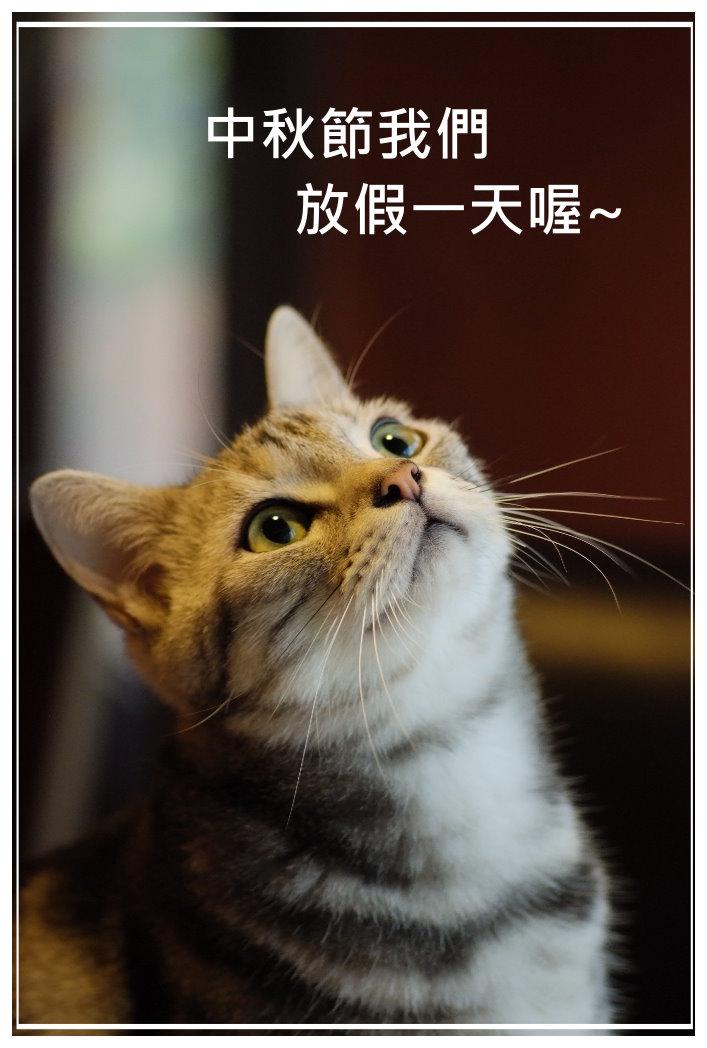 中秋節放假日.JPG