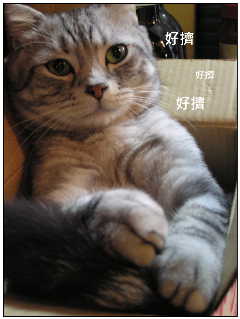 開箱文6.jpg