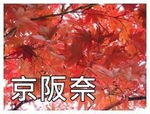 京阪奈NEW.JPG