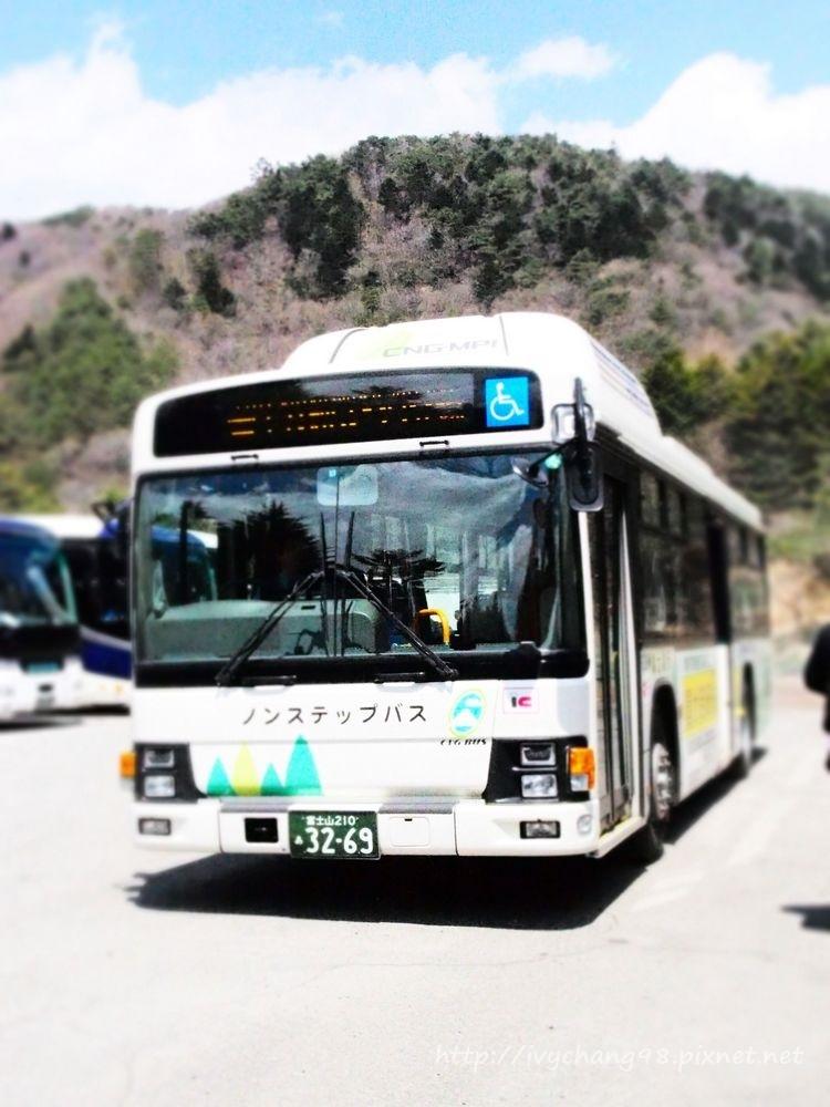 P4280828.jpg