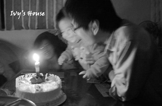 cake04.jpg