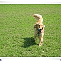 2006-03-04 017.jpg