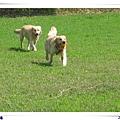 2006-03-04 021.jpg