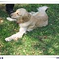 2006-03-04 045.jpg