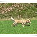 2006-03-04 080.jpg