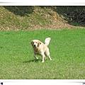 2006-03-04 082.jpg