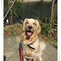 2006-03-04 110.jpg