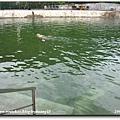 2006-07-15 001.jpg