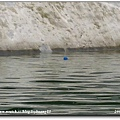 2006-07-15 031.jpg
