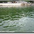 2006-07-15 033.jpg