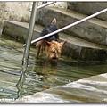 2006-07-15 057.jpg
