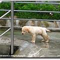 2006-07-15 073.jpg
