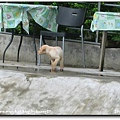 2006-07-15 099.jpg