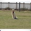 2006-02-11 168.jpg