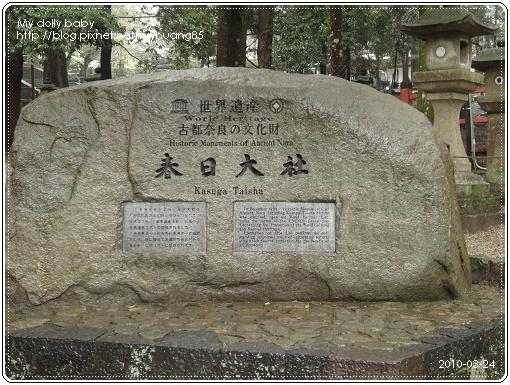 20100324-069.jpg