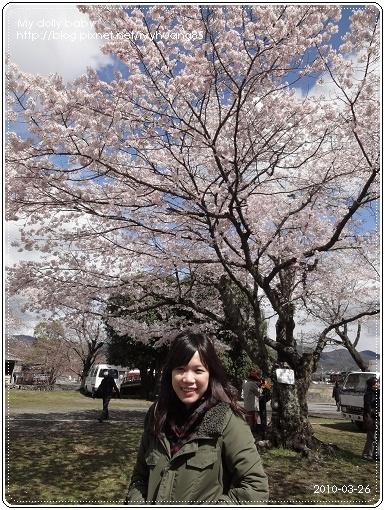20100326-020.jpg